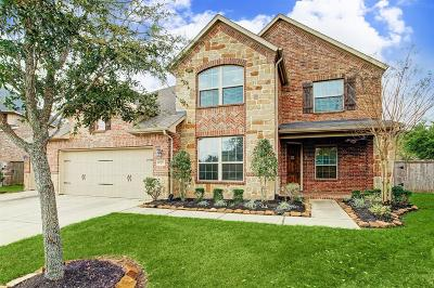Katy Single Family Home For Sale: 27731 Dalton Bluff Court