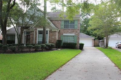 The Woodlands Single Family Home For Sale: 95 Breezy Point Place