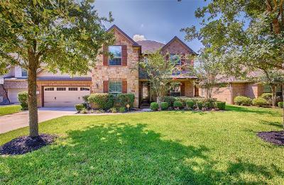 Single Family Home For Sale: 1811 Leela Springs Drive