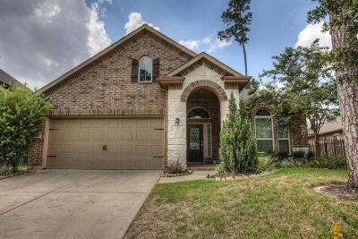 Tomball Single Family Home For Sale: 75 W Wading Pond Circle