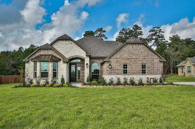 Montgomery Single Family Home For Sale: 18528 Michaels Run