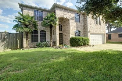Tomball Single Family Home For Sale: 1303 Serene Trail