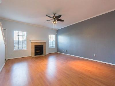 Houston Condo/Townhouse For Sale: 9850 Pagewood Lane #106