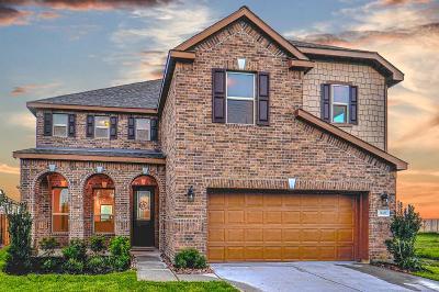 Katy Single Family Home For Sale: 28527 Fielder Village