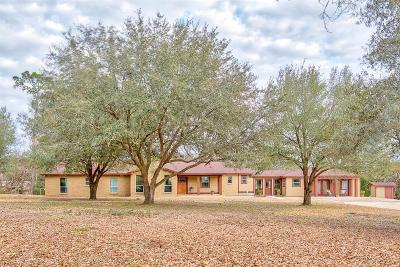Willis Single Family Home For Sale: 16400 Frank Novark Road
