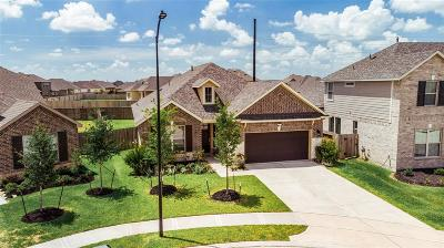 Katy Single Family Home For Sale: 5107 Baroness Lane