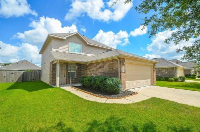 Katy Single Family Home For Sale: 19222 Sandelford Drive