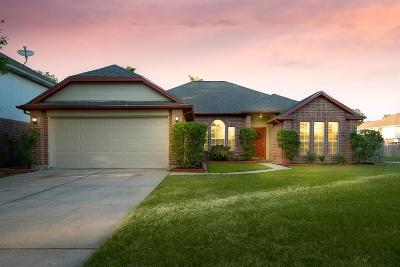 Tomball Single Family Home For Sale: 22502 Willow Branch Lane