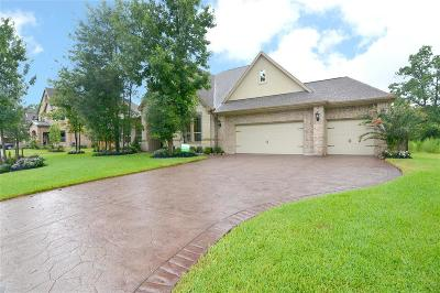Montgomery Single Family Home For Sale: 130 Ballantyne Drive