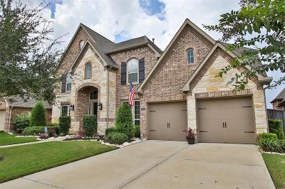 Katy Single Family Home For Sale: 27610 Merchant Hills Lane