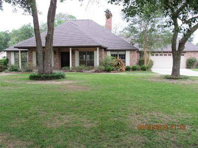 Baytown Single Family Home For Sale: 4711 Raccoon Drive