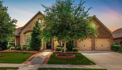 Katy Single Family Home For Sale: 10118 Kessler Cove Lane