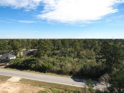Tomball Residential Lots & Land For Sale: Moore Lot 41/42 Blk 104 Street
