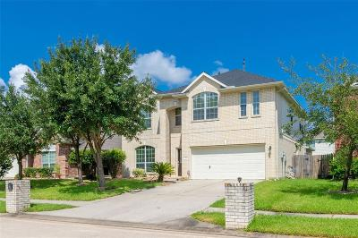 Tomball Single Family Home For Sale: 8314 Sierra Dawn Drive