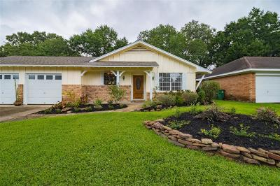 Houston Single Family Home For Sale: 2503 Droxford Drive