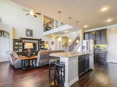 League City Single Family Home For Sale: 4851 Palomar Lane