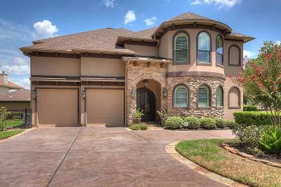 Conroe Single Family Home For Sale: 12150 Pebble View Drive