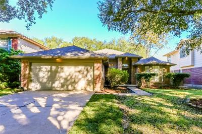 Sugar Land Single Family Home For Sale: 4127 N New Meadows Drive