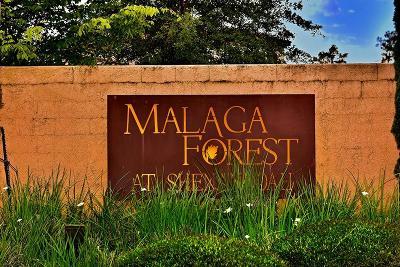 Shenandoah Single Family Home For Sale: 1466 Malagueta Court