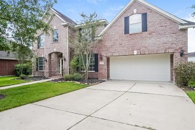 Pearland Single Family Home For Sale: 1008 Vatican Court