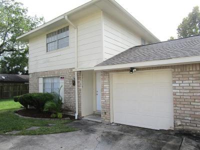 Friendswood Single Family Home For Sale: 17119 Blackhawk Boulevard