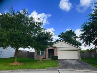Spring Single Family Home For Sale: 4831 San Antonio River Drive