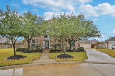 Tomball Single Family Home For Sale: 17415 Old Court Drive