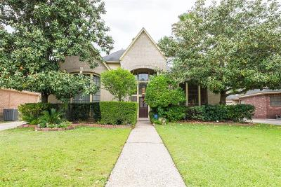 Katy Single Family Home For Sale: 20310 Prince Creek Drive