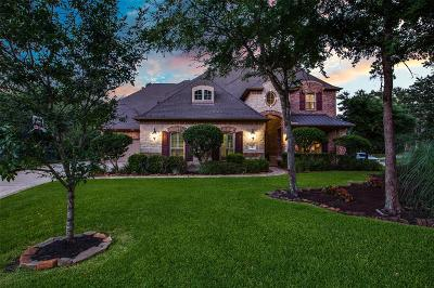 The Woodlands Single Family Home For Sale: 2 Mountain Mistral Place