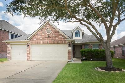 Katy Single Family Home For Sale: 20318 Charlisa Springs Drive