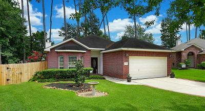 Conroe Single Family Home For Sale: 7704 Board Crossing