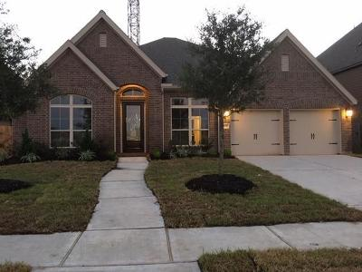 Pearland Single Family Home For Sale: 3418 Noble Terrace Lane