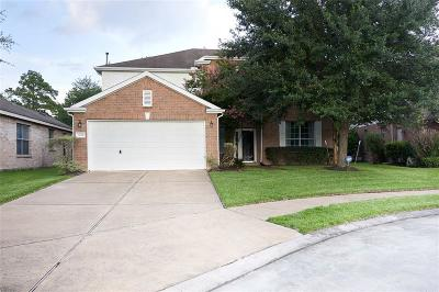 Houston Single Family Home For Sale: 11510 Coppermeade Court