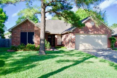Cypress Single Family Home For Sale: 15008 Chestnut Falls Drive