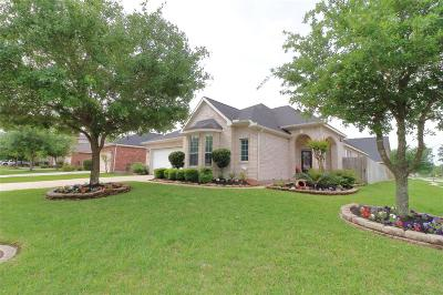 Willis, Montgomery, The Woodlands, Conroe, Shenandoah, Spring Single Family Home For Sale: 19539 Country Canyon Dr Drive