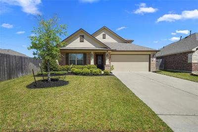 Single Family Home For Sale: 3807 Cactus Field Lane