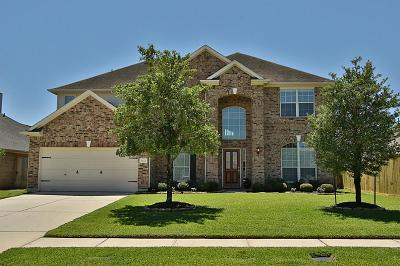 Tomball Single Family Home For Sale: 9123 Cedar Run Falls