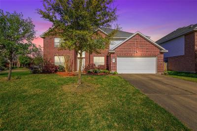 Rosenberg Single Family Home For Sale: 519 Summer Mist Lane