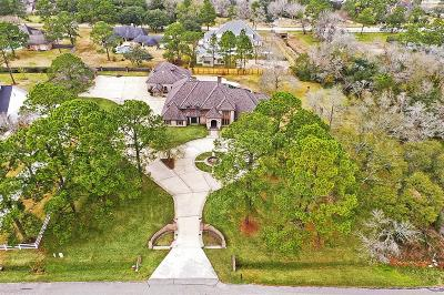 Friendswood Single Family Home For Sale: 802 Cowards Creek Drive