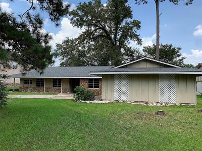 Houston Single Family Home For Sale: 1314 Burning Tree Road