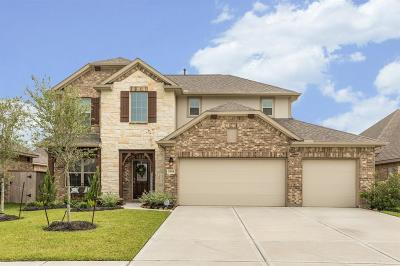 League City Single Family Home For Sale: 2614 Granite Shadow Lane