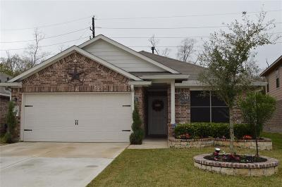 Single Family Home For Sale: 1611 Rancho Grande Drive