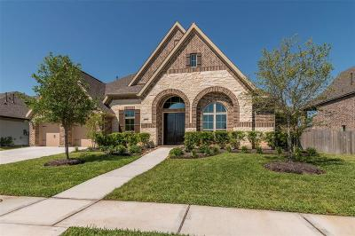 Pearland Single Family Home For Sale: 3434 Magnolia Shores Lane