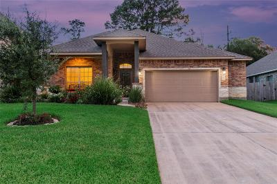 Tomball Single Family Home For Sale: 10702 Sir Alex Drive