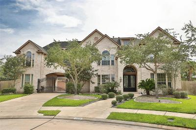 Katy Single Family Home For Sale: 3910 Meagan Hills Court