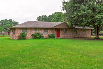 Spring Single Family Home For Sale: 18119 Strack Drive