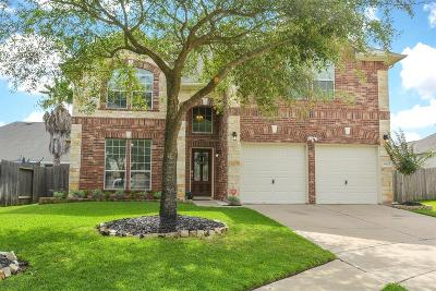Katy Single Family Home For Sale: 6023 Prescott Run Lane