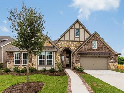 Sugar Land Single Family Home For Sale: 38 Coronal Way