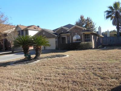 Tomball Single Family Home For Sale: 30534 Country Meadow