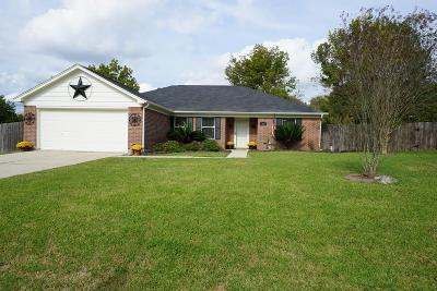 Willis Single Family Home For Sale: 13026 Valleywood Circle